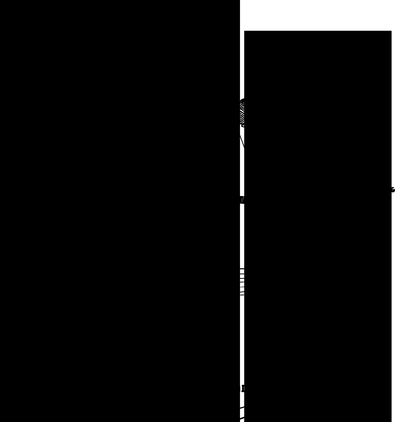 播州織の工程イラスト